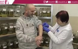 Giải pháp cho đỉa cắn để trị bệnh tại Ba Lan