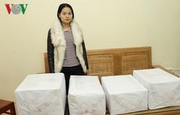 Yên Bái: Bắt giữ 28 kg quả thuốc phiện
