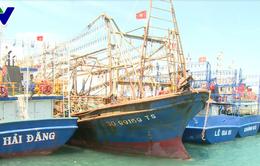 Bình Định: Xây dựng quy trình giám sát tàu cá đánh bắt hợp pháp