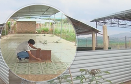 Kon Tum: Xây dựng trái phép lấn chiếm dự án giao thông để trục lợi tiền đền bù