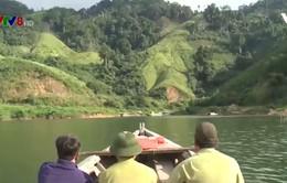 Ngăn chặn khai thác gỗ ở Quảng Nam ngay từ lòng hồ thủy điện