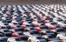 Ô tô nhập khẩu giảm mạnh về cả lượng và giá trị
