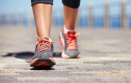 Lý do bạn nên đi bộ 30 phút mỗi ngày?