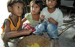 Những sai lầm khiến trẻ bị suy dinh dưỡng thấp còi