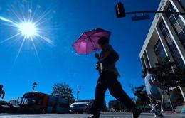 Thế giới ghi nhận nhiệt độ cao kỷ lục trong 3 năm qua