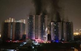 Cháy chung cư cao cấp tại TP.HCM, 13 người tử vong