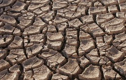 Sẵn sàng ứng phó thông minh với biến đổi khí hậu
