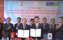 Hàn Quốc hỗ trợ Việt Nam phát triển hợp tác xã