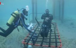 Thử thách sống dưới nước trong 24 giờ