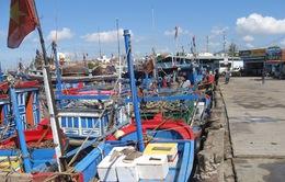 Phú Yên ngừng khai thác cảng cá phường 6 tại TP. Tuy Hòa