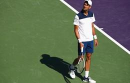 Vòng 2 Miami mở rộng 2018: Djokovic thất bại, thừa nhận sự bất lực
