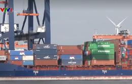 Tăng cường hợp tác Việt Nam - Hà Lan
