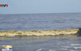 Bãi biển Đà Nẵng xuất hiện vệt nước đen bất thường dài hơn 5km