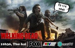 """Đón xem """"The Walking Dead"""" trên VTVcab từ ngày 1/4"""