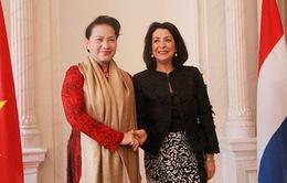 Quan hệ hữu nghị và hợp tác song phương Việt Nam - Hà Lan đang phát triển tốt đẹp