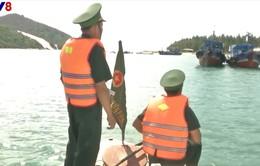 Phú Yên bàn giải pháp ngăn chặn tình trạng ngư dân đánh bắt bất hợp pháp
