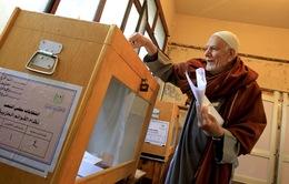Cử tri Ai Cập ngày đầu đi bỏ phiếu trong trật tự và an toàn
