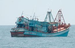 Bình Thuận ngăn chặn, truy bắt tàu giã cào hoạt động trái phép