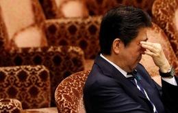 Gần nửa cử tri muốn Thủ tướng Nhật Bản từ chức