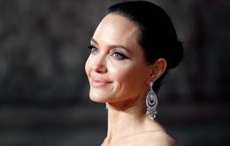 Angelina Jolie không hứng thú với chuyện hẹn hò