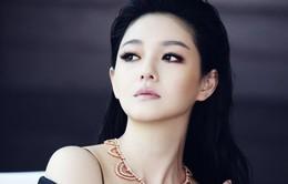 Từ Hy Viên nhập viện, rộ tin mang thai lần thứ 3