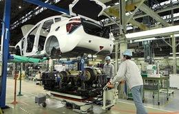 Xe ô tô Việt Nam có thể được cân nhắc ưu đãi thuế