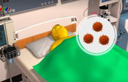Cảnh báo về đợt virus cúm mới ở Mỹ