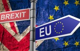 Nhìn lại 1 năm Anh kích hoạt tiến trình Brexit: Đầy kịch tính và khó khăn