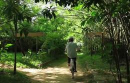 Việc tử tế: Người giữ làng Triêm Tây