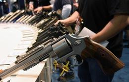 Thảo luận về kiểm soát súng đạn tại Mỹ chưa có hồi kết