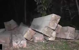 Đăk Lăk: Tiến hành khám nghiệm hiện trường vụ phá rừng phòng hộ