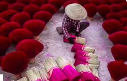 4 bức ảnh của Việt Nam lọt top những bức ảnh đẹp nhất Thế giới