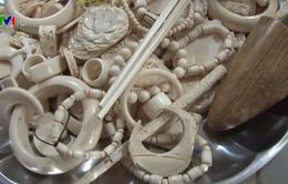 Phát hiện cơ sở kinh doanh trái phép sản phẩm từ ngà voi