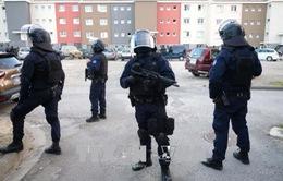 Bắt giữ nghi can lao xe vào binh sĩ Pháp