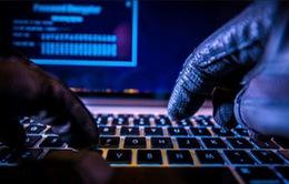 Hơn 300 trường đại học trên thế giới bị tin tặc tấn công