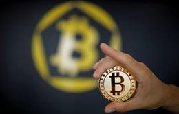 Khối lượng giao dịch Bitcoin giảm sút 50% trong 2 tháng