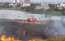 TP.HCM: Cháy đồng cỏ ven sông Vàm Thuật