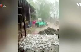 Thời tiết cực đoan ở miền Đông Trung Quốc