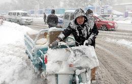Trung Quốc: Đường cao tốc dừng hoạt động do tuyết rơi dày