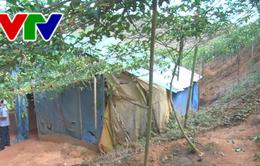 Vụ đào địa đạo khai thác vàng trái phép ở Kon Tum: Làm rõ trách nhiệm cá nhân, tổ chức liên quan