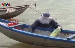 Quảng Ngãi: Người dân ven sông Trà vào mùa cào don