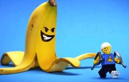 Những bức ảnh thú vị từ Lego