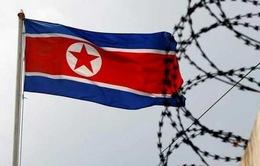 Mỹ áp thêm trừng phạt với Triều Tiên vì cáo buộc dùng vũ khí hóa học