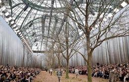 Hết trạm vũ trụ, Chanel lại biến sàn runway thành rừng