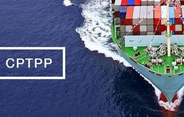 CPTPP được ký kết - Thuận lợi và thách thức đối với doanh nghiệp Việt Nam