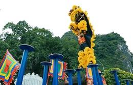 Mai Hoa Thung - Nghệ thuật Lân Sư Rồng đỉnh cao
