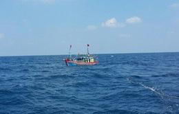 Tìm kiếm tàu cá của Cà Mau mất liên lạc