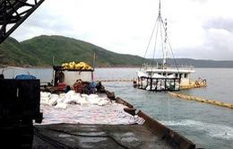 Trục vớt tàu chìm tại Quy Nhơn