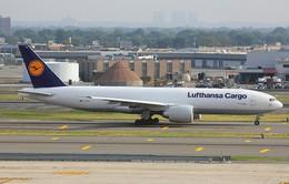 Cướp táo tợn 5 triệu USD tiền mặt trên máy bay của Lufthansa