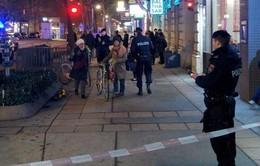 Tấn công bằng dao liên tiếp trên đường phố ở thủ đô Vienna, Áo
